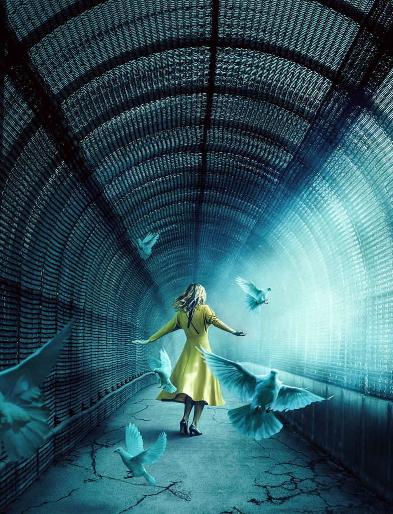 Pigeon Pixel | Joseph Xerri | Caged
